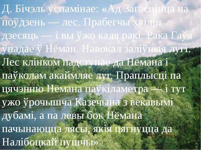 Д. Бічэль успамінае: «Ад Загасцінца на поўдзень — лес. Прабегчы хвілін дзесяц...