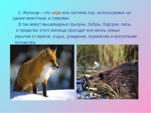 2. Жилище – это нора или система нор, используемых ни одним животным, а семь