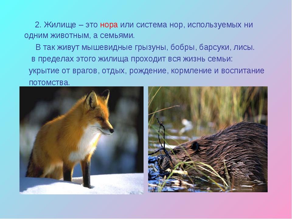 2. Жилище – это нора или система нор, используемых ни одним животным, а семь...