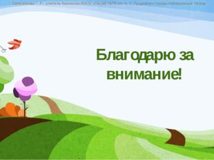 Благодарю за внимание! Сальникова Г. Р., учитель биологии МАОУ «Лицей №78 им.