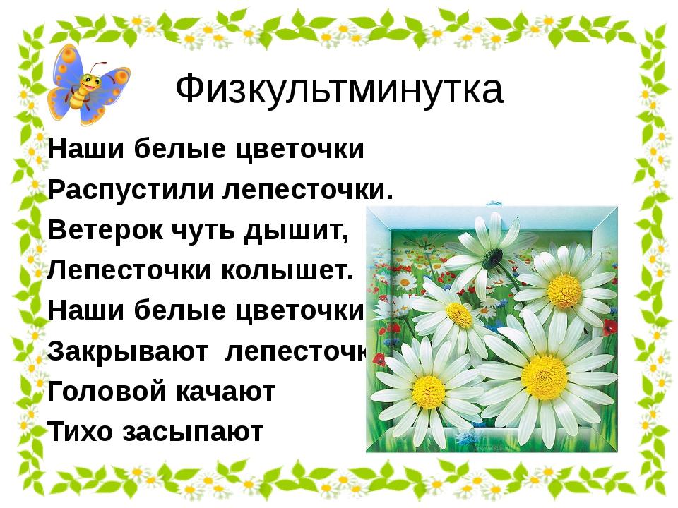 Физкультминутка Наши белые цветочки Распустили лепесточки. Ветерок чуть дышит...