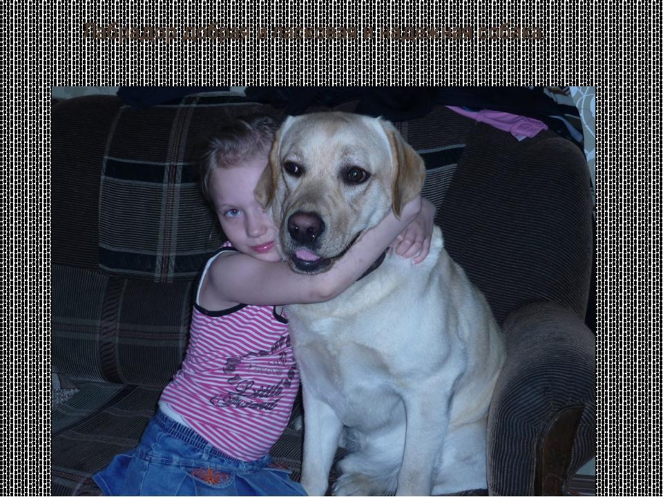 Лабрадор добрая и ласковая и надежная собака.