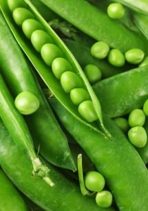 C:\Users\ASUS\Desktop\mini_green-pea-vegetables1.jpg