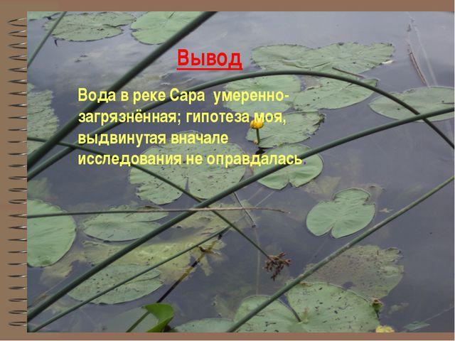 Вода в реке Сара умеренно-загрязнённая; гипотеза моя, выдвинутая вначале иссл...