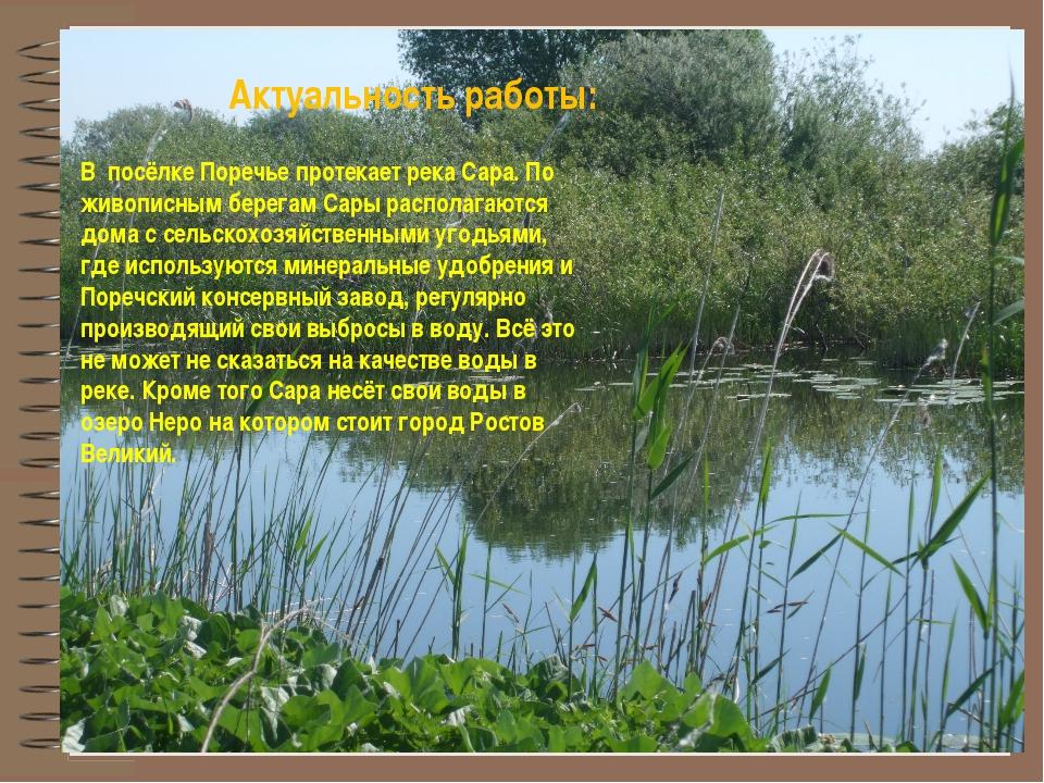 Актуальность работы: В посёлке Поречье протекает река Сара. По живописным бер...