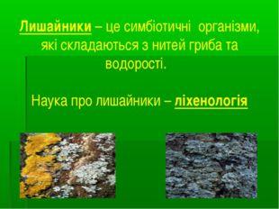 Лишайники – це симбіотичні організми, які складаються з нитей гриба та водоро