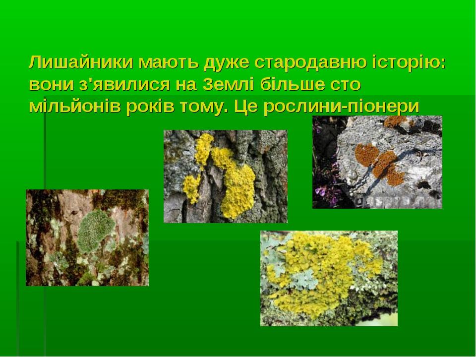 Лишайники мають дуже стародавню історію: вони з'явилися на Землі більше сто м...