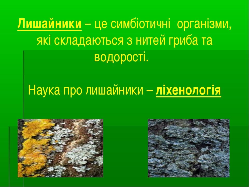 Лишайники – це симбіотичні організми, які складаються з нитей гриба та водоро...
