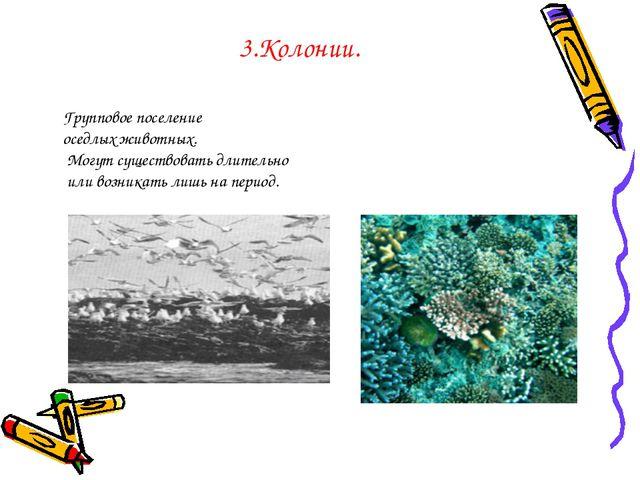 3.Колонии. Групповое поселение оседлых животных. Могут существовать длительно...