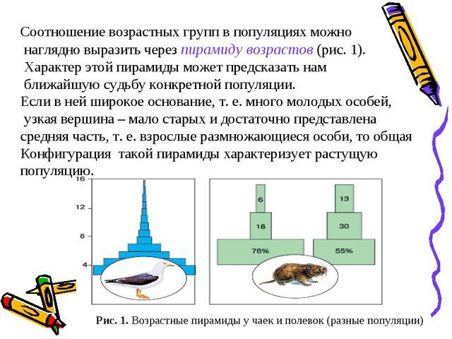 Соотношение возрастных групп в популяциях можно наглядно выразить через пирам...