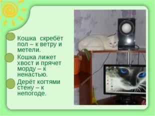 Кошка скребёт пол – к ветру и метели. Кошка лижет хвост и прячет морду – к не