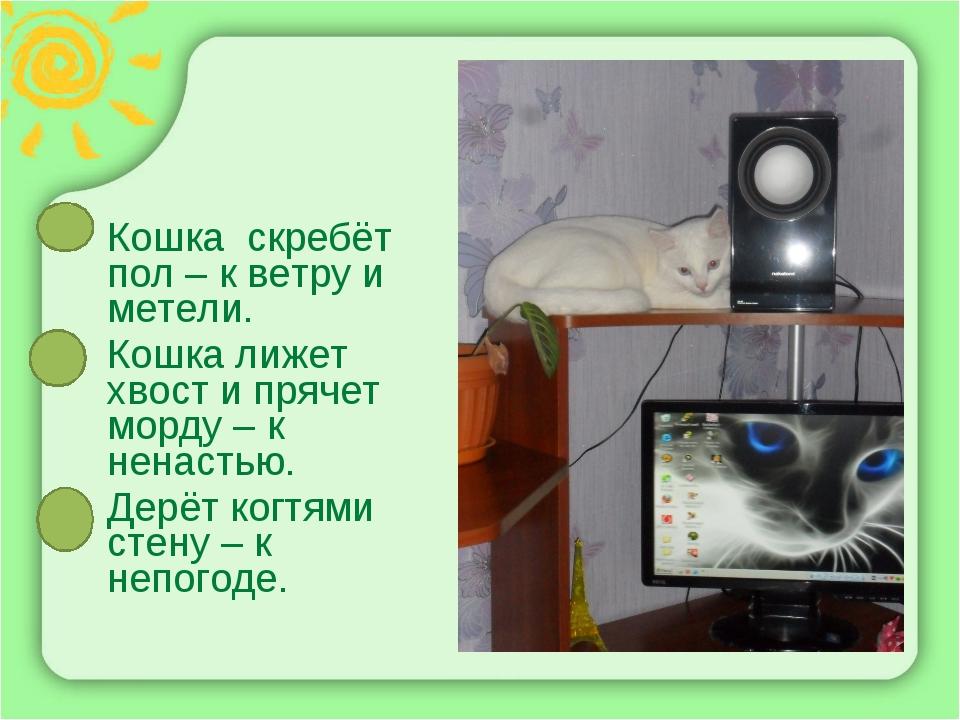 Кошка скребёт пол – к ветру и метели. Кошка лижет хвост и прячет морду – к не...