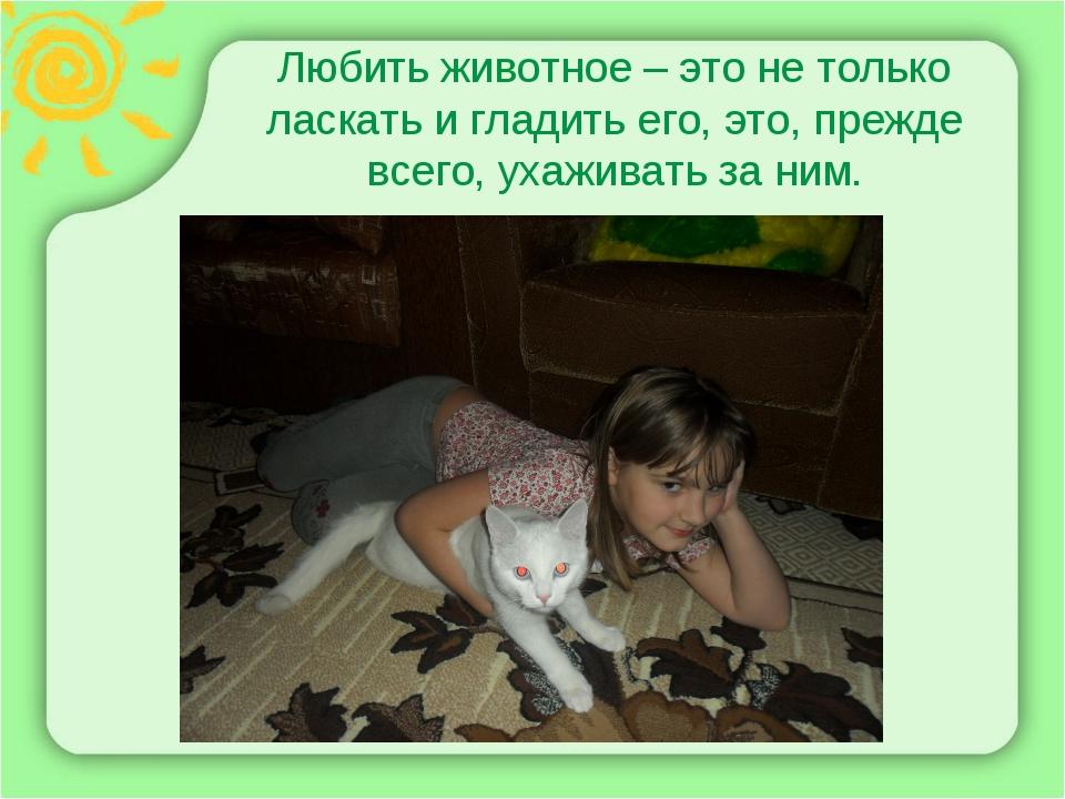 Любить животное – это не только ласкать и гладить его, это, прежде всего, уха...