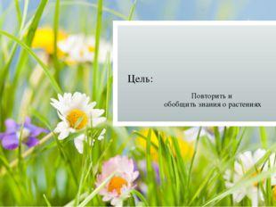 Цель: Повторить и обобщить знания о растениях