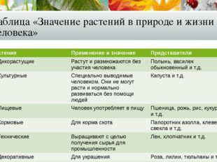 Таблица «Значение растений в природе и жизни человека» Растения Применениеи з