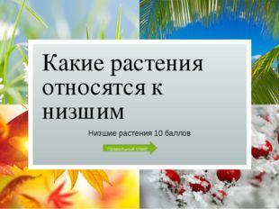 Дайте определение понятию «Голосеменные Растения» Голосеменные растения 30 ба