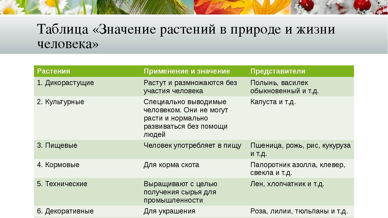 Таблица «Значение растений в природе и жизни человека» Растения Применениеи з...