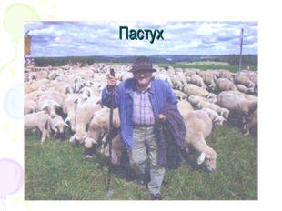 Пастух