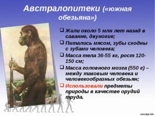 Австралопитеки («южная обезьяна») Жили около 5 млн лет назад в саванне, двуно