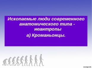 Ископаемые люди современного анатомического типа - неантропы а) Кроманьонцы.