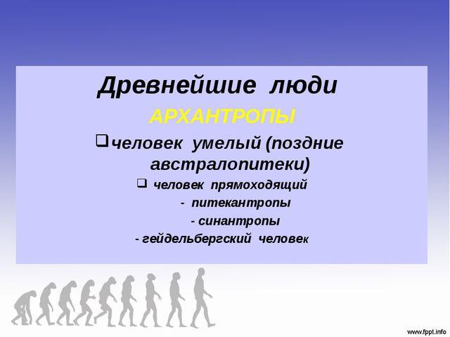 Древнейшие люди АРХАНТРОПЫ человек умелый (поздние австралопитеки) человек пр...