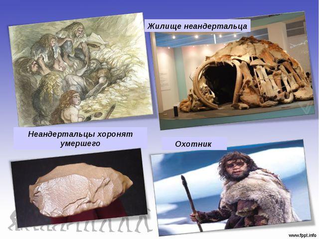 Неандертальцы хоронят умершего Жилище неандертальца Охотник