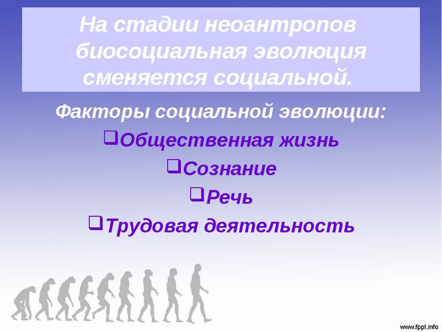 На стадии неоантропов биосоциальная эволюция сменяется социальной. Факторы со...