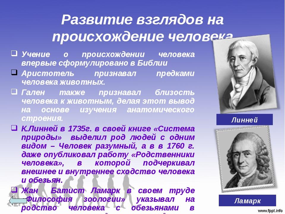 Развитие взглядов на происхождение человека Учение о происхождении человека в...