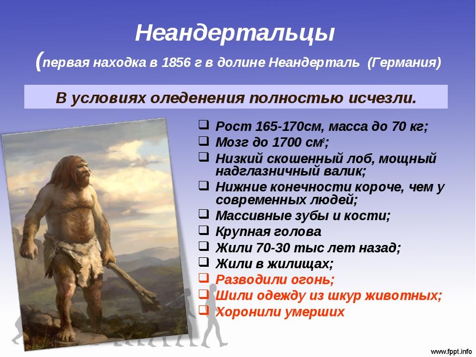 Неандертальцы (первая находка в 1856 г в долине Неандерталь (Германия) Рост 1...
