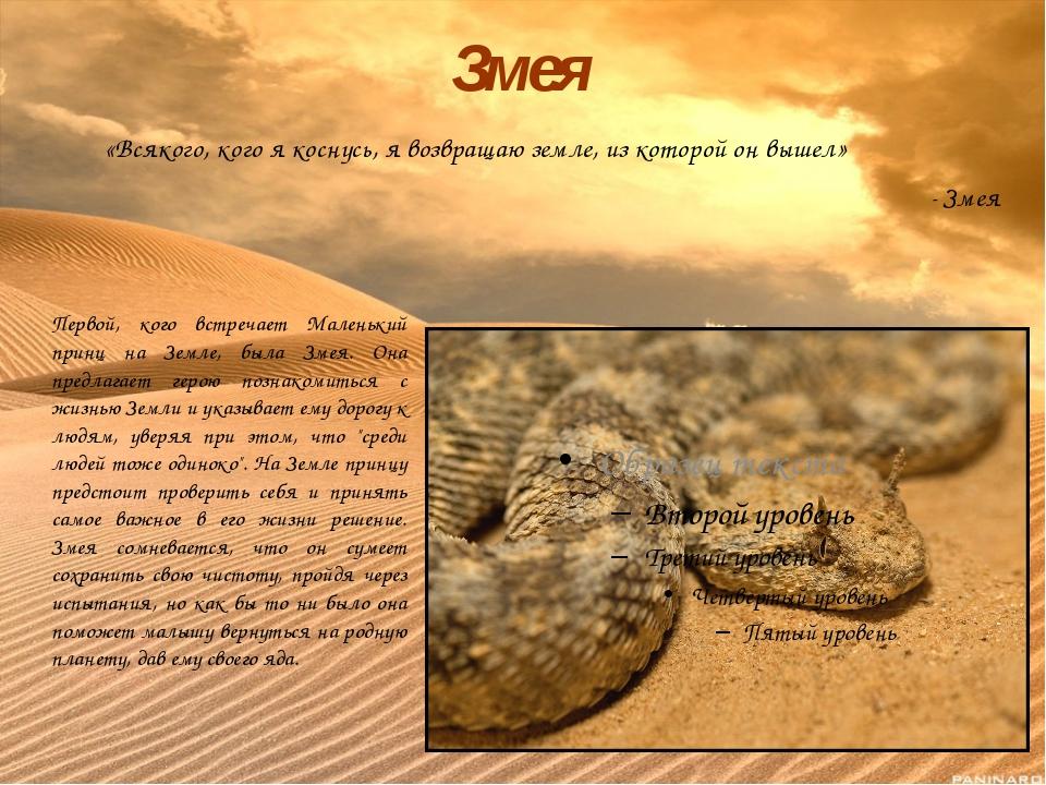 «Всякого, кого я коснусь, я возвращаю земле, из которой он вышел» - Змея Зме...