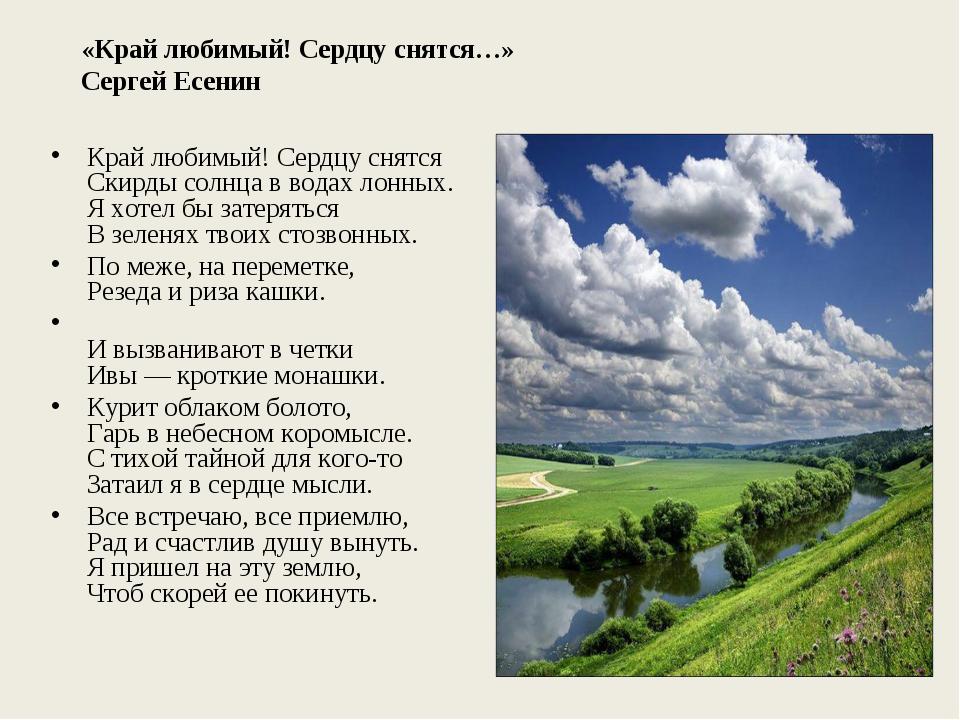 «Край любимый! Сердцу снятся…» Сергей Есенин Край любимый! Сердцу снятся Скир...