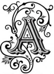 http://my.biznet.ru/users/avatars/e77098e778.jpg