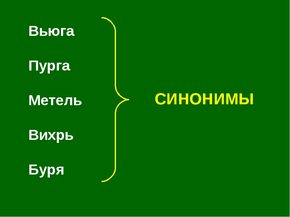 Вьюга Пурга Метель Вихрь Буря СИНОНИМЫ
