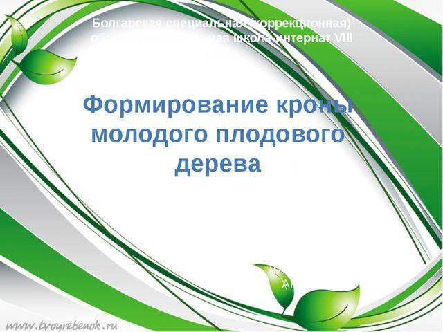 Болгарская специальная (коррекционная) общеобразовательная школа-интернат VI...