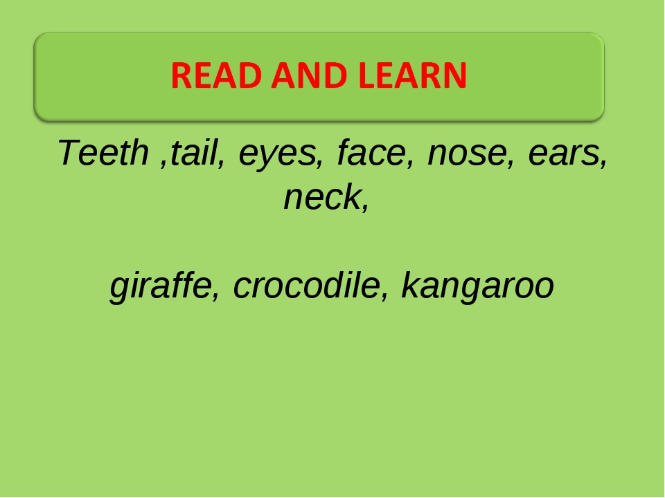 Teeth ,tail, eyes, face, nose, ears, neck, giraffe, crocodile, kangaroo
