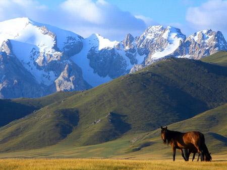 http://www.advantour.com/img/kyrgyzstan/geography/mountain-fields.jpg