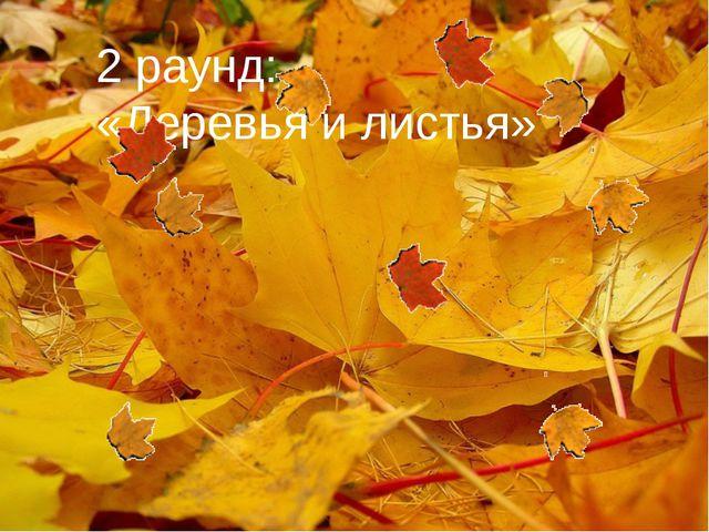 2 раунд: «Деревья и листья»