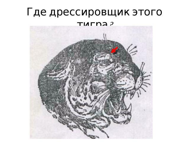 Где дрессировщик этого тигра?