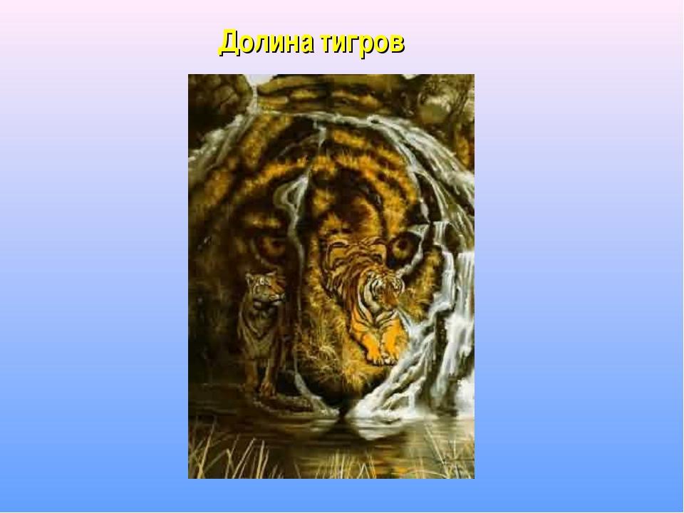 Долина тигров