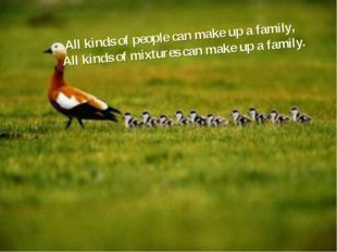 All kinds of people can make up a family, All kinds of mixtures can make up a