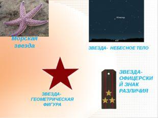 ЗВЕЗДА- ОФИЦЕРСКИЙ ЗНАК РАЗЛИЧИЯ ЗВЕЗДА- ГЕОМЕТРИЧЕСКАЯ ФИГУРА Морская звезда