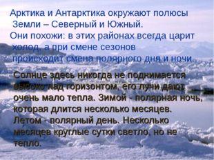Арктика и Антарктика окружают полюсы Земли – Северный и Южный. Они похожи: в