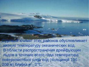 Суровый климат этих районов обусловливает низкую температуру океанических вод