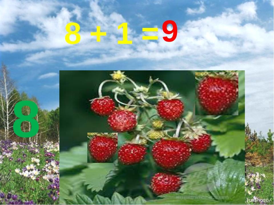 8 8 + 1 = 9