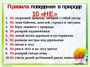 Правила поведения в природе 10 «НЕ» Не загрязняй природу, забирай с собой му