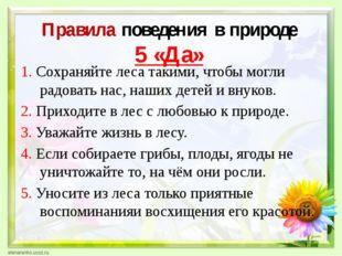 Правила поведения в природе 5 «Да» 1. Сохраняйте леса такими, чтобы могли ра