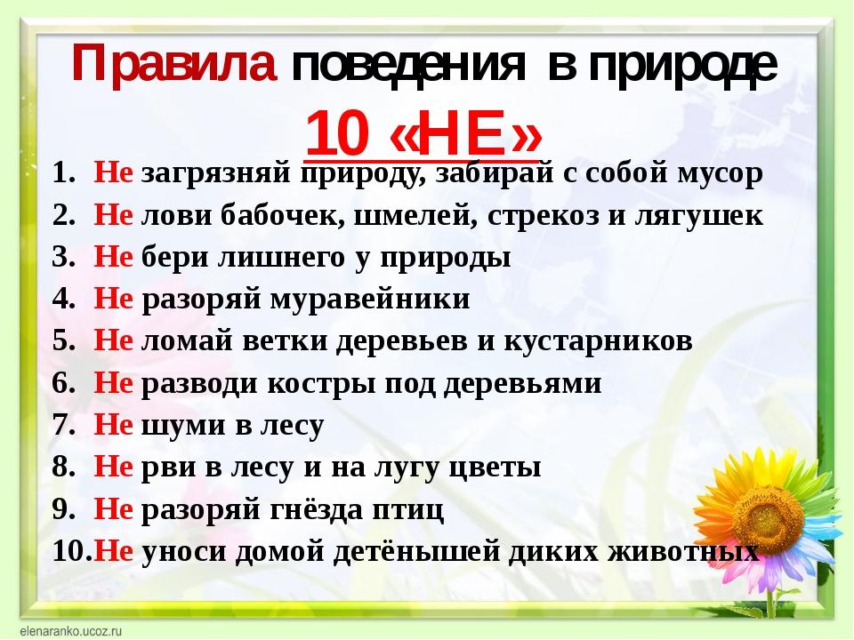Правила поведения в природе 10 «НЕ» Не загрязняй природу, забирай с собой му...