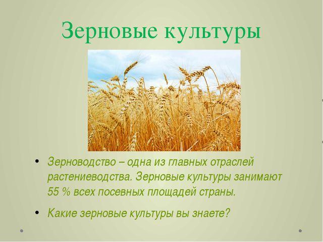 Зерновые культуры Зерноводство – одна из главных отраслей растениеводства. Зе...