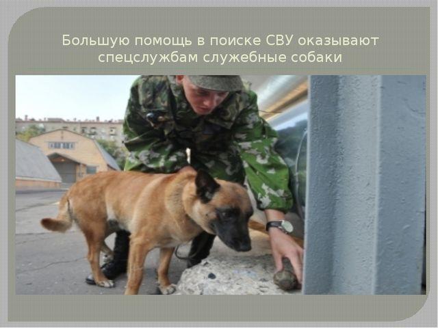 Большую помощь в поиске СВУ оказывают спецслужбам служебные собаки