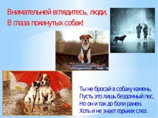 Внимательней вглядитесь, люди, В глаза покинутых собак! ». Ты не бросай в соб
